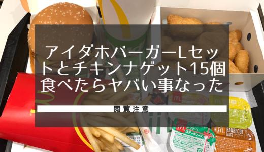 マクドナルドでアイダホバーガーLセットとチキンマックナゲット15個食べたらやばいことになった